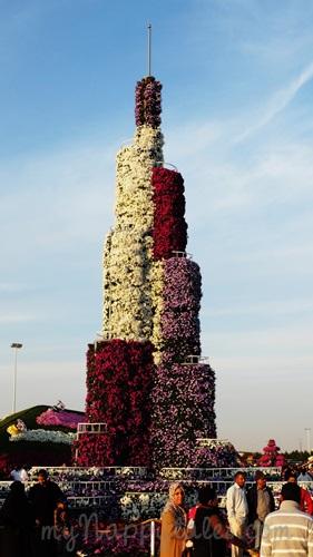 Dubai Miracle Garden BurjKhalifa3662