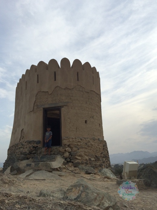 Al Badiya Small Fort
