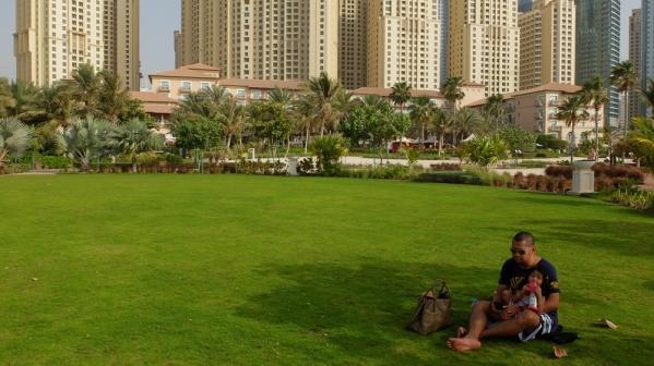 Ritz-Carlton Lush Green Property