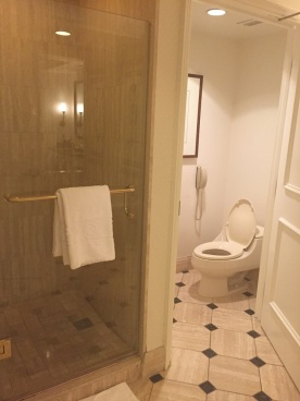 Ceasar Palace Toilet Bath