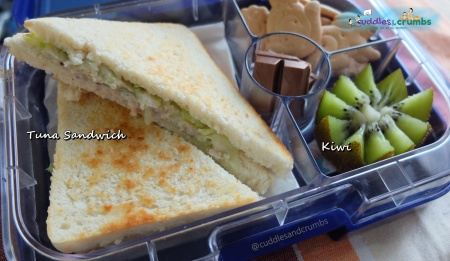 Tuna Sandwich Bento Lunch Box