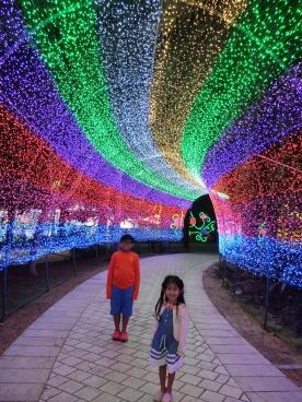 glow-garden-rainbow-tunnel-2