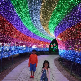 glow-garden-rainbow-tunnel-2