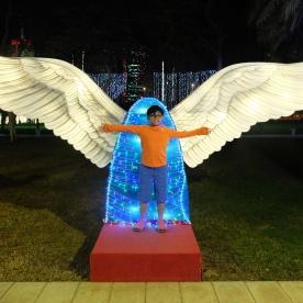 glow-garden-wings