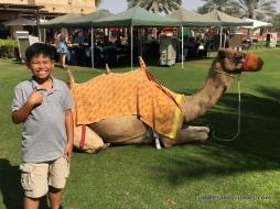 BabAlShamsBrunch_CamelRide