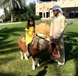 BabAlShamsBrunch_PonyRide